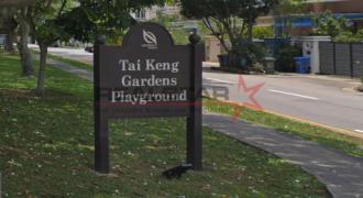 Huge Land @ Tai Keng Gardens Estate